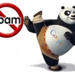 Más acerca de Google Panda