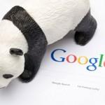 Navneet Panda y el algoritmo temido de Google