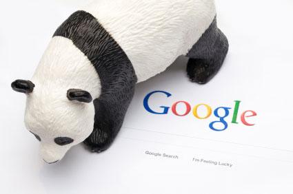 navneet panda y algoritmo
